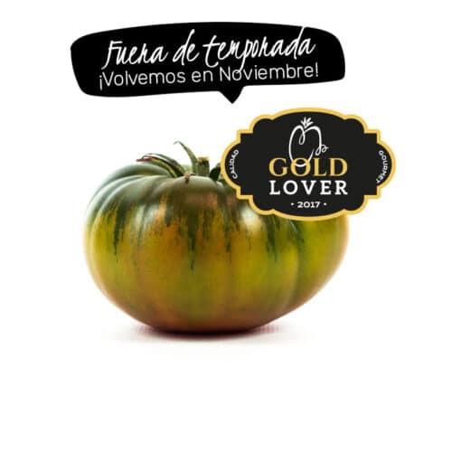 Tomate Raf Gold Lover fuera de temporada