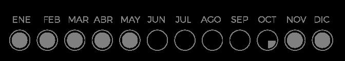 Calendario de produccion tomate raf Gold Lover