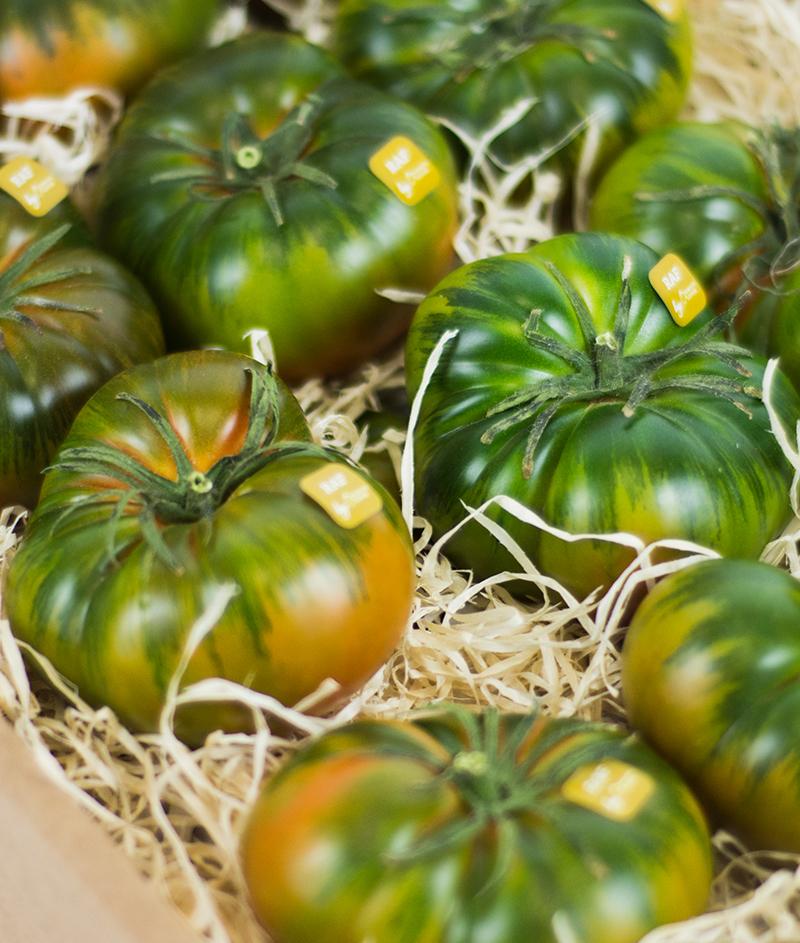 variedades de tomate raf