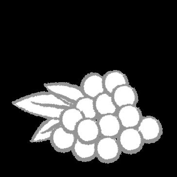Perlas de Aceite de oliva virgen extra