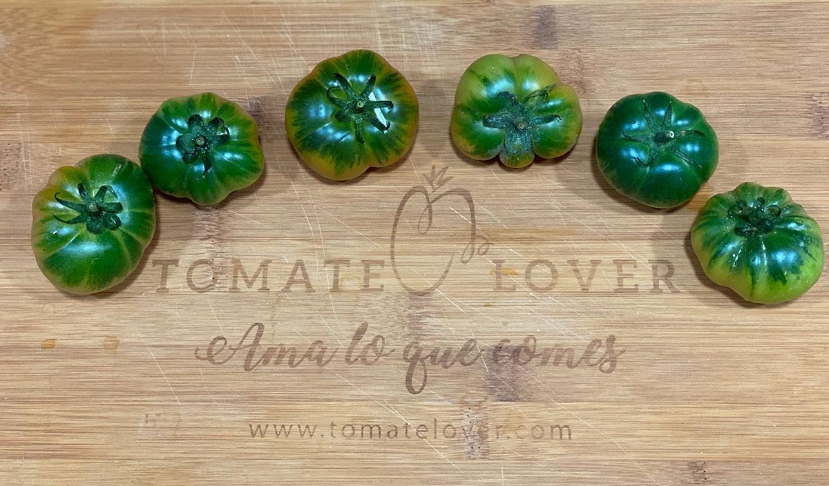 Variedades-de-tomate-Raf